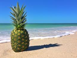 pineapple wallpaper desktop backgrounds 2048x1342 2239 kb by