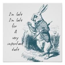 rabbit poster rabbit posters zazzle au