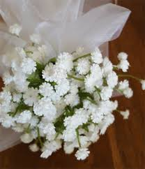 Baby S Breath Flower Flower Floral Wand White Baby U0027s Breath Flower Wand For