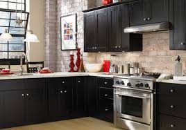 Replacing Hinges On Kitchen Cabinets by Door Hinges Lovely Changing Kitchen Cabinets Color Imposing How