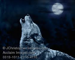 wolf howling at the moon clipart stock photography acclaim images