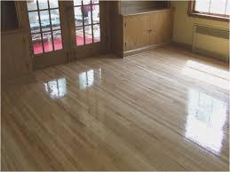 Best Wood Floor Mop Best Mop For Wood Floors Image Of Dust Mop Cute Best Natural
