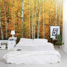 Wall Mural Forest Sunrise Wall Winsome Forest Wall Mural Ebay Birch Forest Sunlight Wall Wall