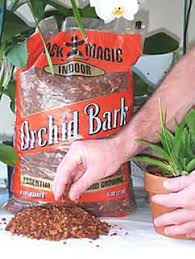 orchid bark orchid potting mixes bark