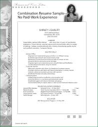 Job Skills In Resume by 10 Work Experience On Resume Applicationsformat Info