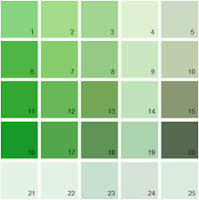 green paint swatches benjamin moore green house paint colors palette greens