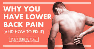 Lower Back Pain Bench Press Why You Have Lower Back Pain And How To Fix It Bold And Determined