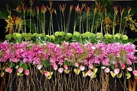 file 2013 melbourne international flower and garden show