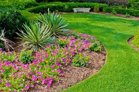 Backyard Simple Landscaping Ideas Garden Awesome Easy Landscaping Ideas For Beginners Front Yard