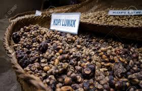 Luwak Coffee a closeup of unprocessed luwak coffee the most expensive coffee
