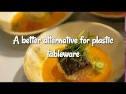 100 pics solution cuisine leaftrend palm leaf products are a single use solution for the non
