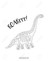 diplodocus skeleton outline drawing fossil of a diplodocus