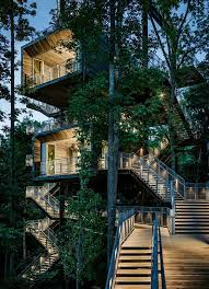 element of play in this innovative tree property design and style