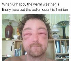 allergies meme random pinterest allergies meme and memes