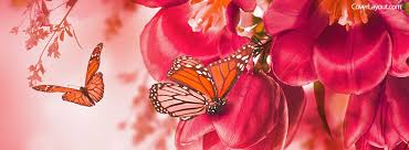 cover layout com spring flowers and butterflies facebook cover coverlayout com