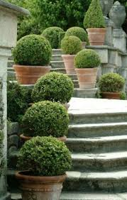Potted Plant Ideas For Patio by 25 Best Garden Pots Ideas On Pinterest Potted Plants Potted