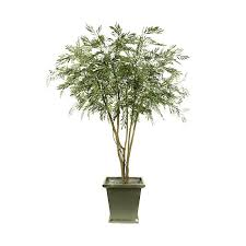 artificial tree mimosa