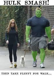 Hulk Smash Meme - hulk smash picture ebaum s world