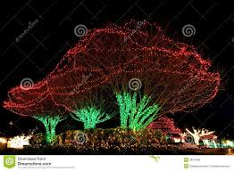 outdoor lighted tree decorations trees