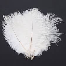 feather home decor 10pcs new ostrich feathers home party ceremony decor nature high