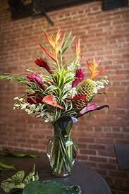 plant of the month club flower of the month club 3 months fresh cut