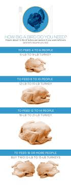 best 25 turkey size ideas on turkey size chart