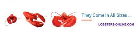 thanksgiving lobster recipe with seasonal nutmeg chestnut flavorings