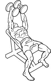 Incline Bench Dumbbell Rows Hammer Grip Incline Press Add This Upper Chest Exercise To Your
