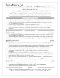 sample financial analyst resume resume ideas