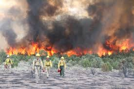 Wildland Fire  amp  Fuel   US Forest Service Research  amp  Development     Click to view     Forest Service Researchers Focus on Firefighter Safety