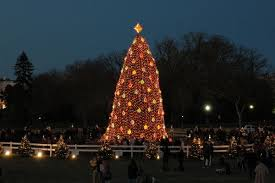 christmas in washington dc a photo gallery of decorations