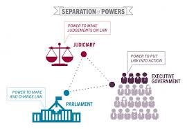 What Is The Role Of Cabinet Members Separation Of Powers Parliament Executive And Judiciary