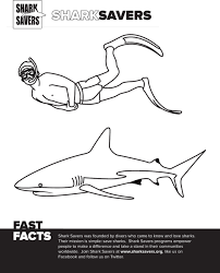 bull shark coloring page free download