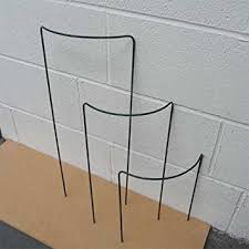 small plant supports small bow plant supports 46cm pack of 4 amazon co uk garden