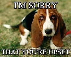I Am Sorry Meme - i m sorry sad dog meme on memegen