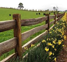 Farm Ideas Exterior Farmhouse With Window Window Post And Rail Fence - best 25 farm fence ideas on pinterest farm fencing pasture