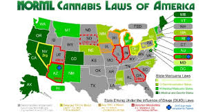 usa map just states states that legalized map so your state just legalized