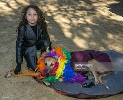 park city dog parade halloween 23rd annual tompkins square halloween dog parade photos and images