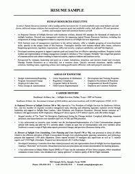financial executive resume templates free download sen saneme