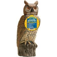 dalen sol r owl srho 4 lawn ornaments ace hardware