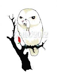 new print it u0027s a owl and a u2026 a u2026 a u2026 dead mouse andrea zuill u0027s blog