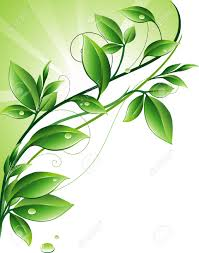 green ornament royalty free cliparts vectors and stock