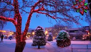 Deer Christmas Lights Red Deer Lights The Night Visit Red Deer