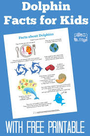 dolphin facts for dolphin facts
