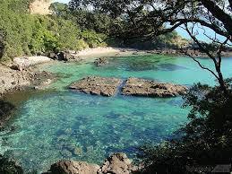 matarangi coromandel nz where my aunty has her holiday home