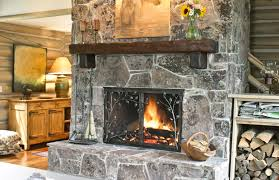 Ideas Fireplace Doors Fireplace Screens And Doors Luxury With Ideas Thedailygraff