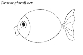 coloring pages luxury fish drawings kids simple coloring