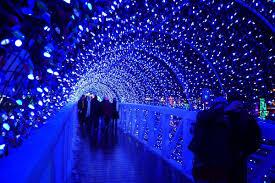 retama park christmas lights home rhema lights