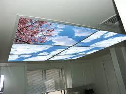 office fluorescent light alternative amazon com cumulus ii skypanels fluorescent light diffuser
