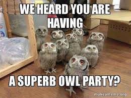 Superb Owl Meme - we heard you are having a superb owl party make a meme
